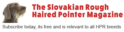 Subscribe to the Slovakian Rough Haired Pointer Magazine, its free and relevant for all HPR breeds